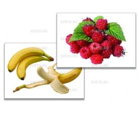 """Дидактическое пособие """"Фрукты, ягоды, орехи"""""""