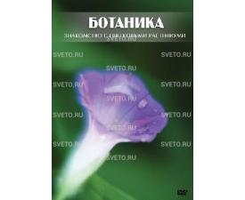 """Диск """"Ботаника. Знакомство с цветковыми растениями"""""""
