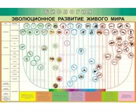 """Таблица """"Эволюционное развитие живого мира"""""""