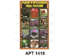 Стенд редкие и исчезающие виды растений
